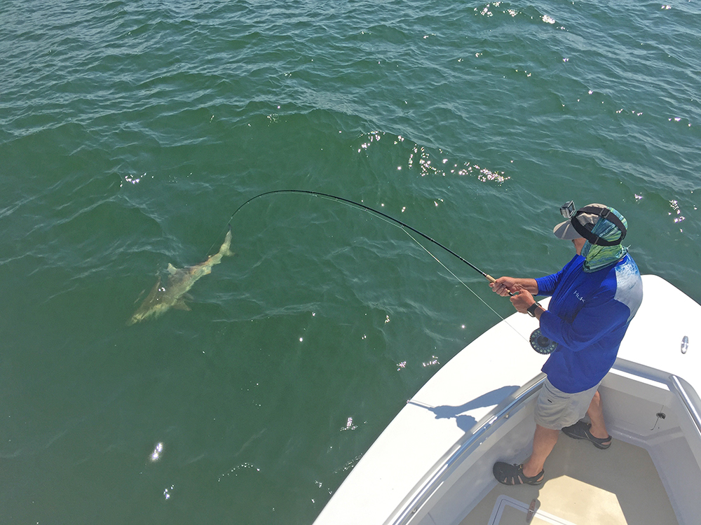 Picture of angler nearshore fishing